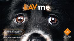 LAVme_250x140pixel