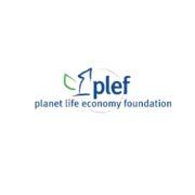 logo-plef 1