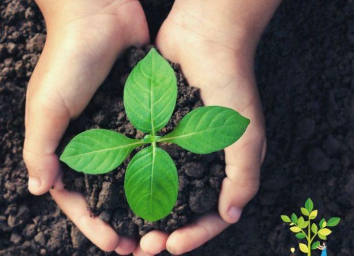 Ecomafia 2021: tutti i dati sui reati ambientali in Emilia-Romagna