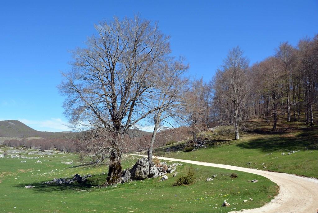 """Alta valle dell'Aniene: """"No al nuovo acquedotto"""""""