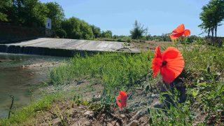 Consumo di suolo in Emilia-Romagna: il commento di Legambiente